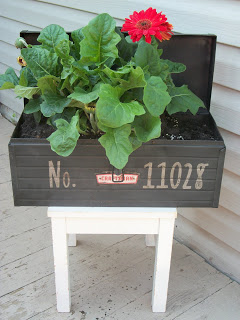 Toolbox Planter