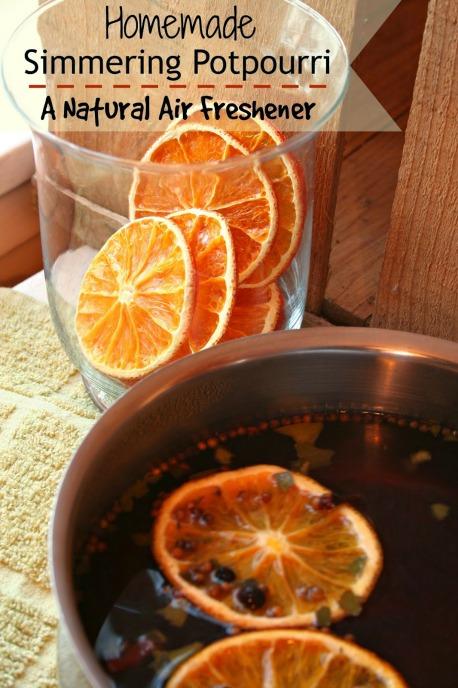 homemade simmering potpourri 1