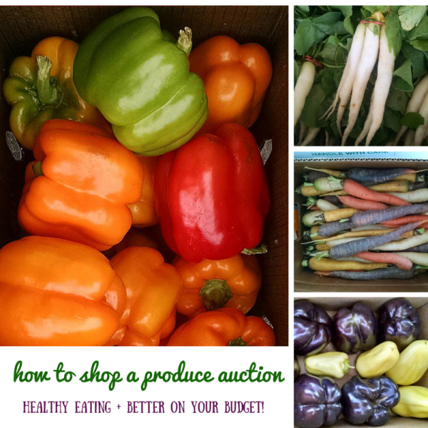 how-to-shop-a-produce-auction