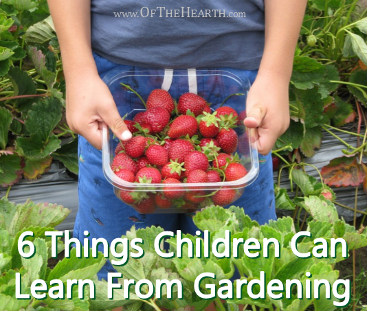 6-Things-Children-Can-Learn-From-Gardening