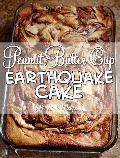 peanut_butter_cup_earthquake_cake