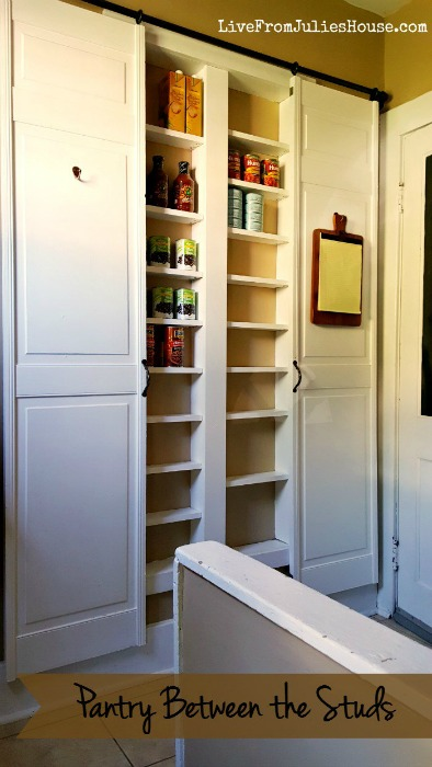 pantry-between-studs-14