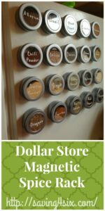 Dollar Tree Magnetic Spice Organizer