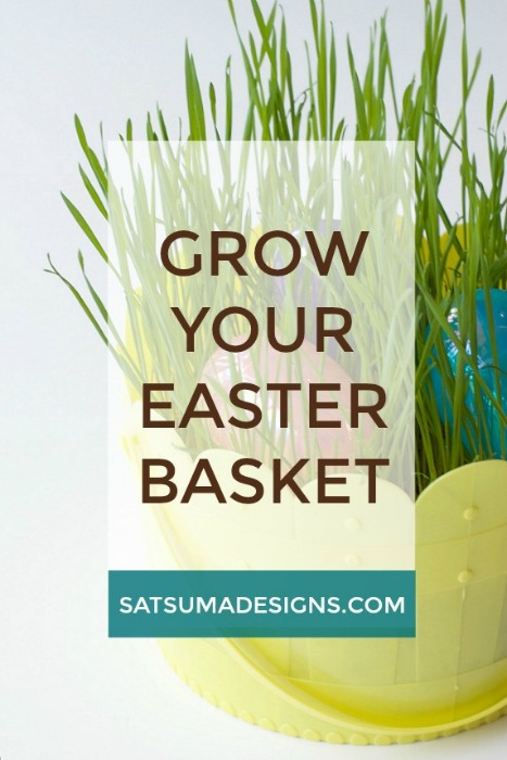 GROW_YOUR_EASTER_BASKET